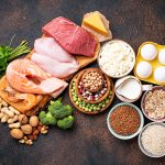 Animal and plant protein sources