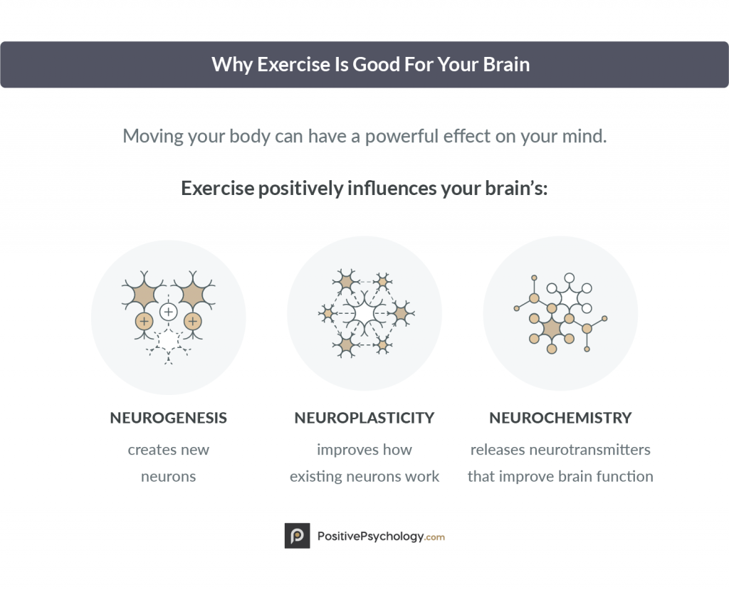 Importance of exercise for your cognitive fitness