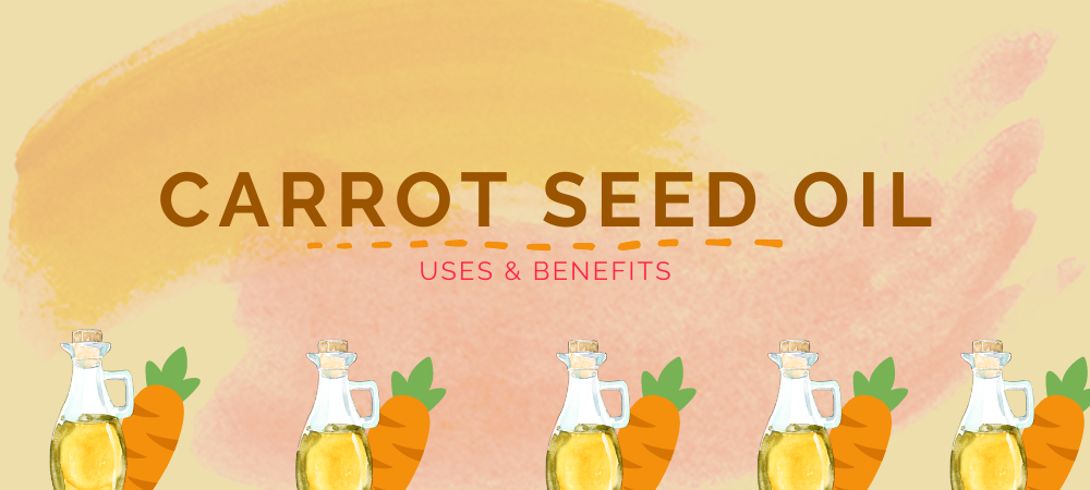 Carrot Seed Oil - Its Uses & Benefits